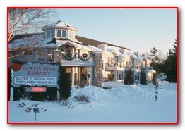 Apple Creek Resort Hotel & Suites - Winter View
